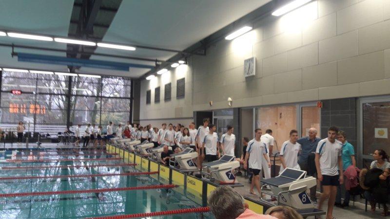 berliner schwimmverband